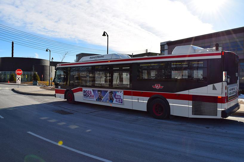 A TTC bus on the street